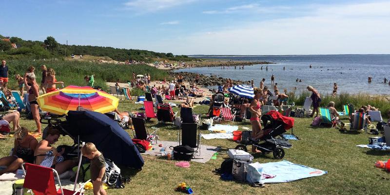 magnarps-beach2